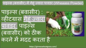 Wheatgrass for Piles